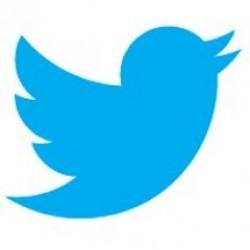 Ömür boyunca sadece Twitter kullanmak mı?