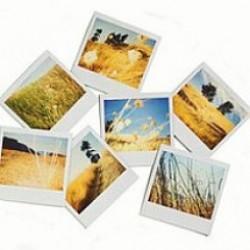 Fotografik hafızaya mı sahip olmak isterdin?
